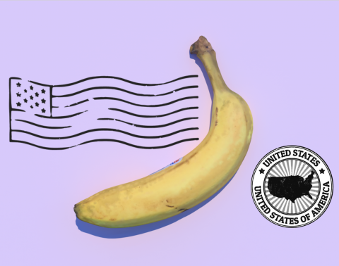 Banana in front of the US flag