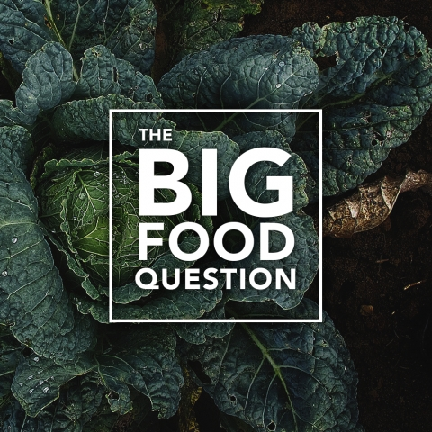 The Big Food Question