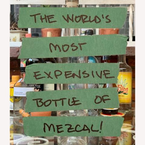 Most Expensive Mezcal